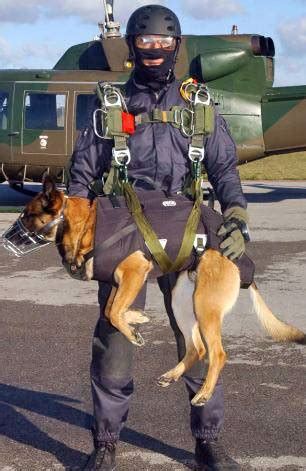 Reaganite Independent: Latest Navy SEAL K9's Equipped with