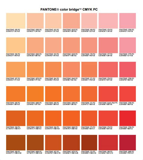 CMYK Color Chart - 8+ Free Download For PDF | Sample Templates